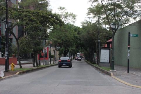 Ave Las Damas Avenida 3