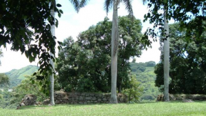 La antigua aduana alajuela2