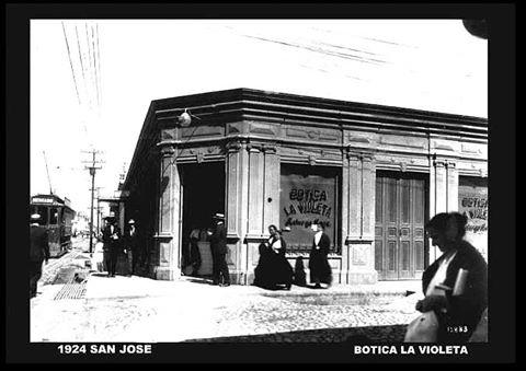 Botica Violeta 1924